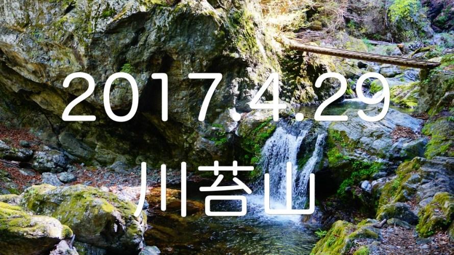 お目当ては百尋の滝!気持ちの良い沢沿いを歩いていく「川苔山」。
