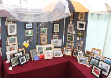 2017 New Forest Show - Photography
