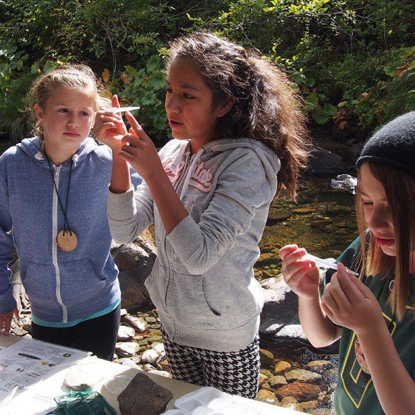 Environmental Education Ms - Sou Academic Programs