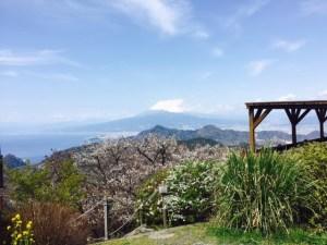 伊豆富士山眺望2016