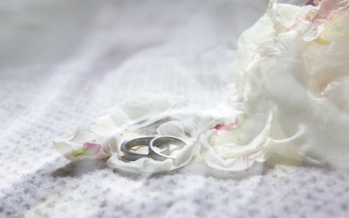 Diese kurze Fabel, inspiriert von meinem Hochzeitsfest, handelt von Liebe, Freundschaft und Natur