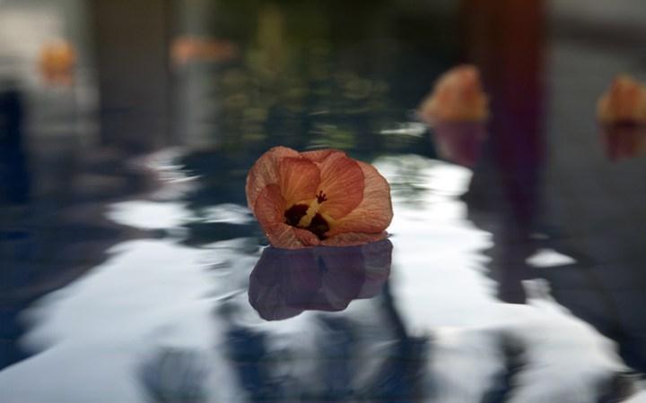 Weiblichkeit vom Wasser lernen: Hier ist deine Inspiration.