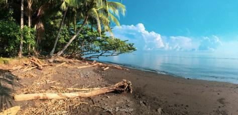 nature beach