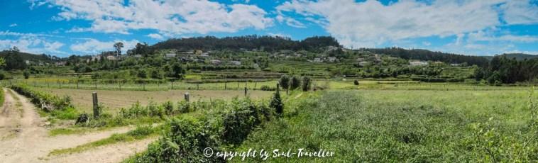 soul-traveller-camino-portugese-central_119