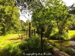 soul-traveller-camino-portugese-central_223