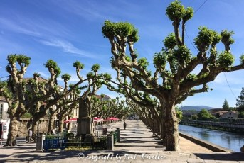 soul-traveller-camino-portugese-central_272