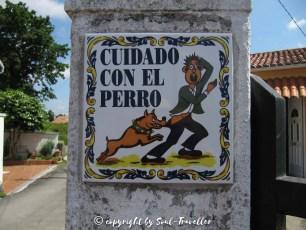 soul-traveller-camino-portugese-central_287
