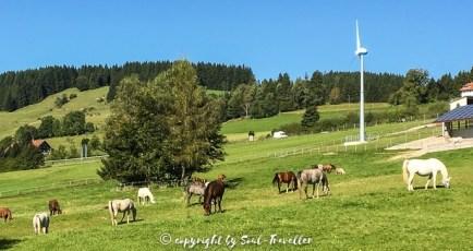 soul-traveller-augsburger-jakobsweg-nach-bregenz_078