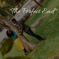 The Perfect End; A Love Story