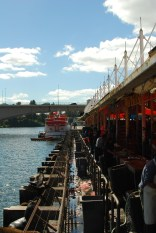 Hungry Sea Lions waiting in the back of Valdivia´s Market