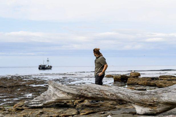 Coastline on the Tasman Peninsula