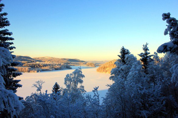 Vinter i Sollefteå - Västra Skogen