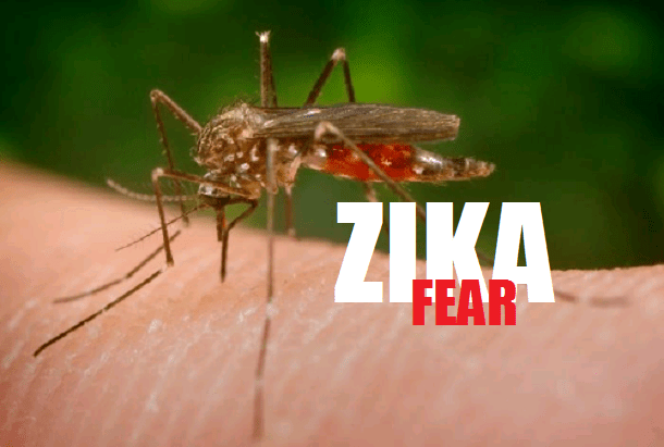 1-zika-virus.png
