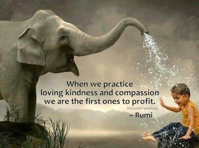 rumi compassion.jpg