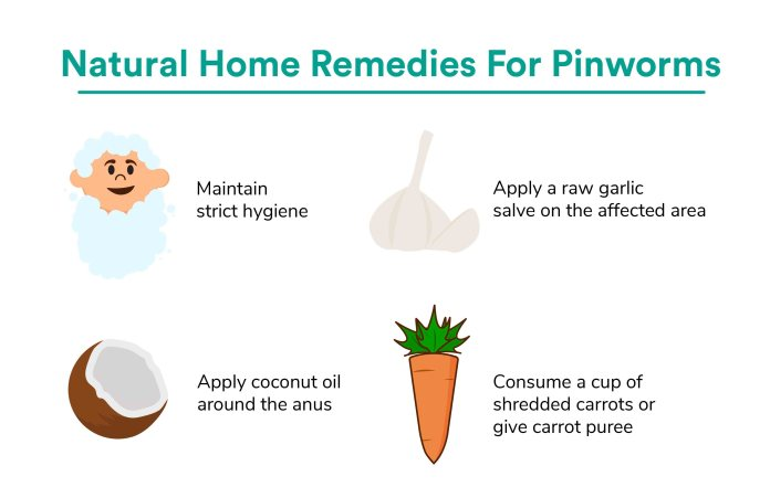 Natural Remedies for Pinworm in babies