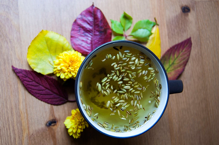 Fennel Tea Side Effects and Risks