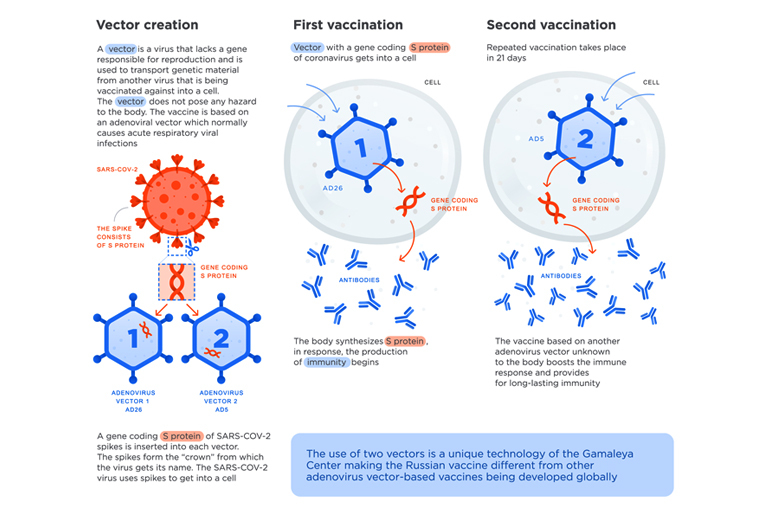 How do Adenoviral Vector-based Vaccines work