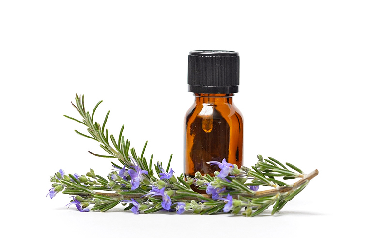 What Are The Benefits Of Rosemary Oil For Hair