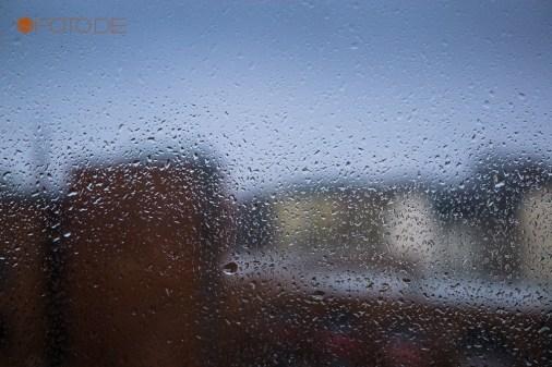 on the window 1