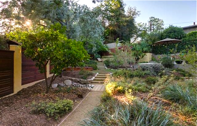 Drought tolerant yard and terraces with California natives