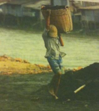 11 year old child labourer