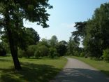 Kew Gardens,,London, UK - taken by Sue Ellam, London, UK