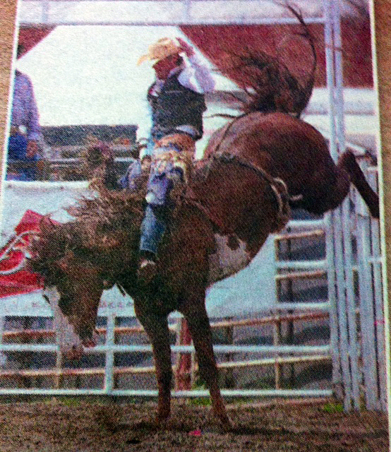 Cloverdale Rodeo & Country Fair, BC, Canada - taken by Glynn Manyirons, Canada