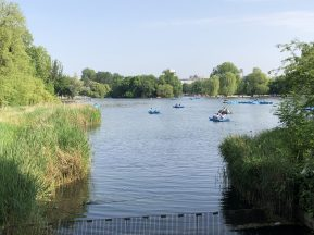 A lake on a summer's day in Regents Park, London, UK. Taken by Peter Thompson