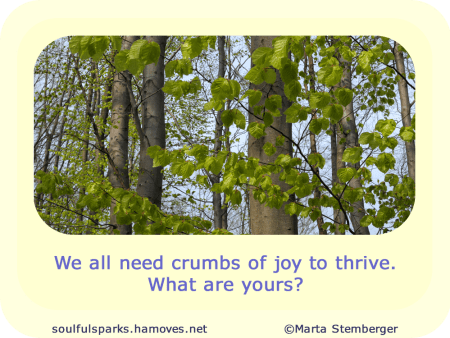 We all need crumbs of joy to thrive. What are yours?