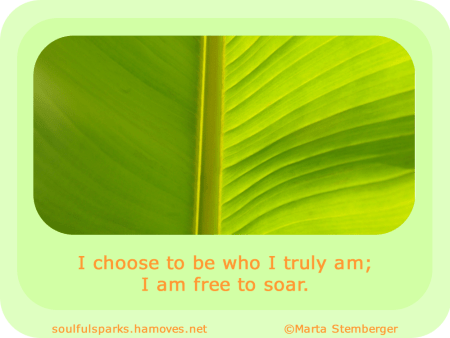 """I choose to be who I truly am; I am free to soar."""