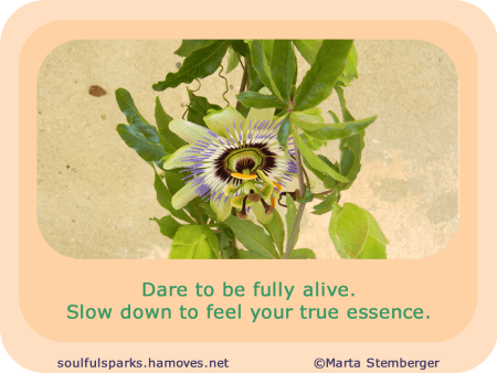 """Dare to be fully alive. Slow down to feel your true essence."""
