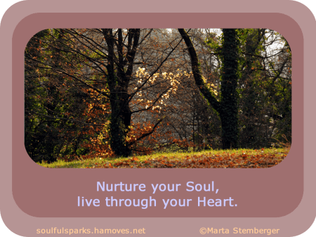 """""""Nurture your Soul, live through your Heart."""" ~ Soulful Wizardess"""