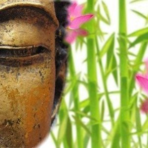 develop emotional & spiritual freedom with spiritual counseling & coaching