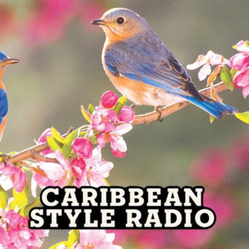 CARIBBEAN STYLE RADIO