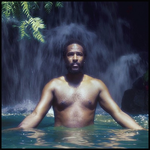 Dr Dreadbeard Presents Marvin Gaye in Jamaica