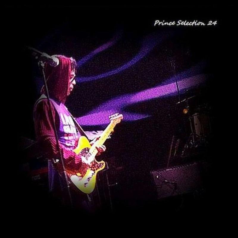 prince selection 24