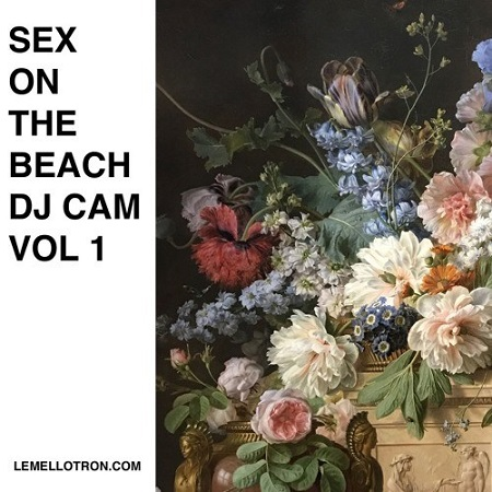 Sex on the Beach by DJ Cam Vol 1