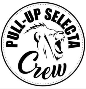 Pull-Up Selecta 2017 Mixtape // free download