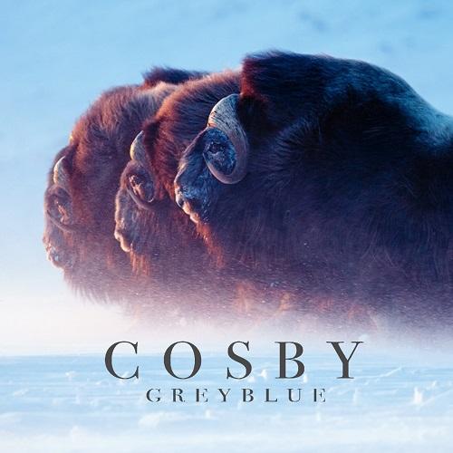 Videotipp: GREYBLUE - Charity-Song zum Schutz der Arktis von COSBY
