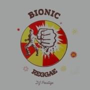 Bionic Reggae - free Mixtape