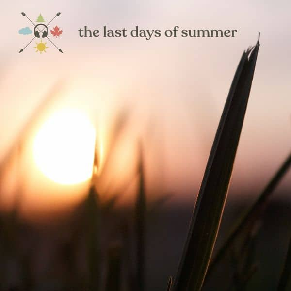 The Last Days of Summer MIX