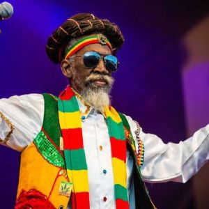 Bunny Wailer Tribute Mix
