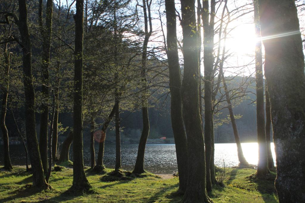 Lac de Longemer_souliervertblog
