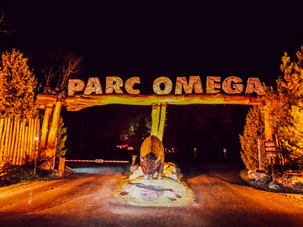 Visiter le parc Oméga by night