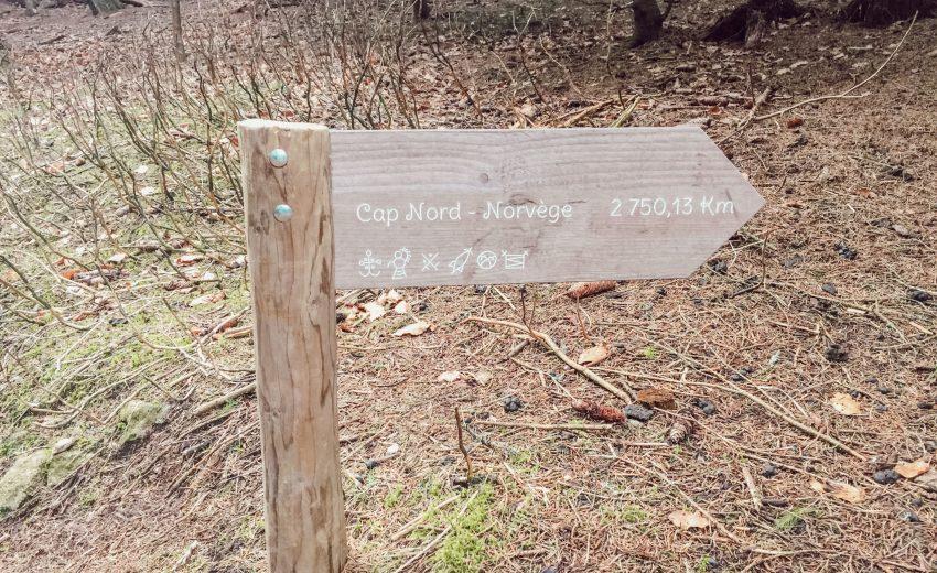Visiter la ferme aux rennes dans les Vosges