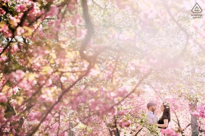 Brooklyn Botanical Garden Cherry Blossom Engagement Award