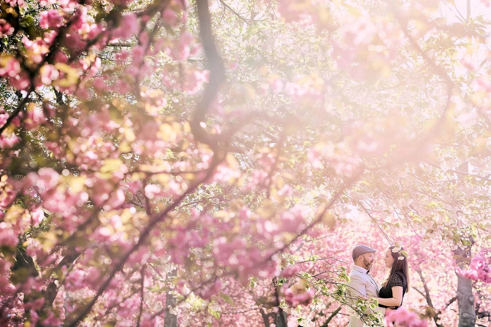 Brooklyn Cherry Blossom Engagement