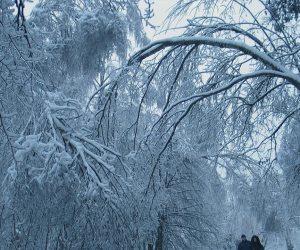 Viagens de inverno