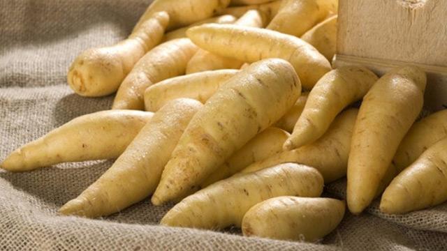 """Em algumas regiões do país, a batata baroa é conhecida como """"mandioquinha""""."""