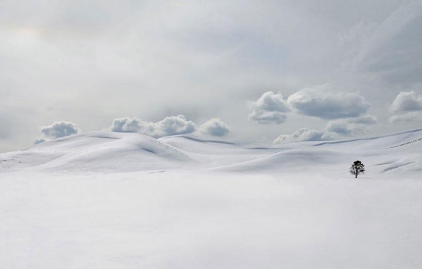 uelloustonskiy nacionalniy park